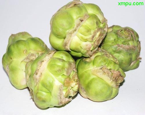 蔬菜名称:榨菜   英文名称:preserved