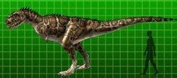 福左轻鳄龙
