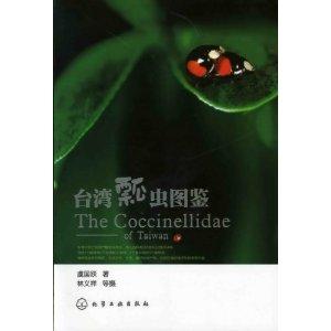 台湾瓢虫图鉴