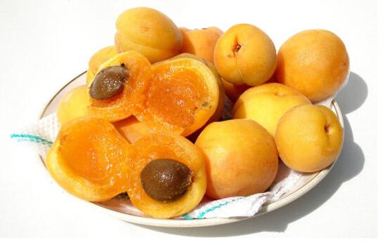 杏子的食用禁忌