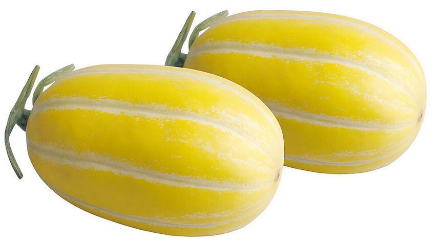香瓜的种类有好几种